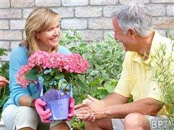 Top tips for avoiding injury and strain while gardening