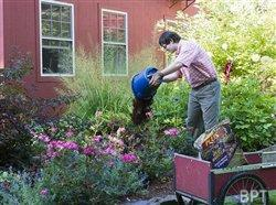 Easy solutions to backyard problems so gardeners can focus on fun