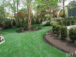Four ways to drought-proof your yard